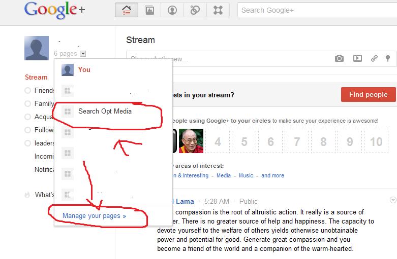 google+ manage