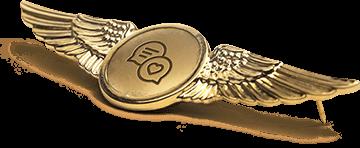 Social Media Marketing Service Badge